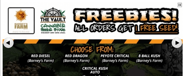 The Vault Cannabis Seeds Store Discount Coupon Promo Certificate Offer