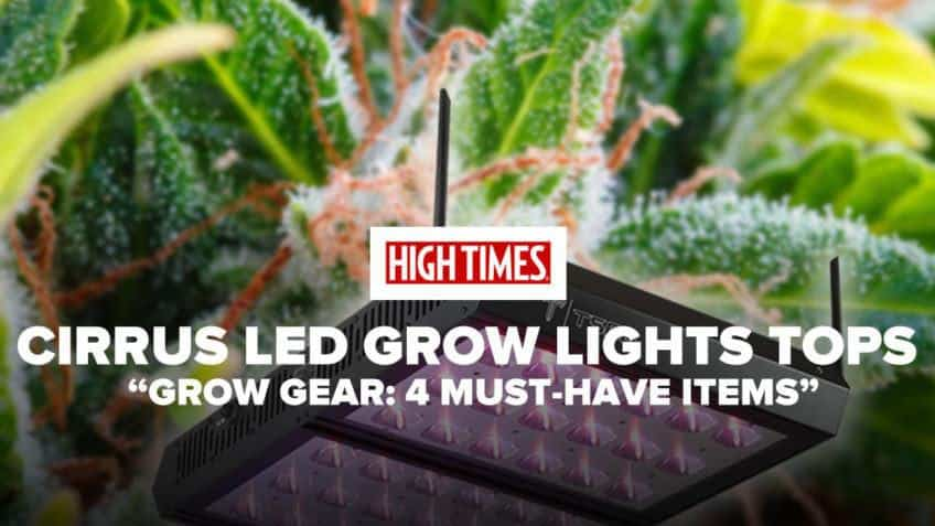 Cirrus LED Grow Light - Coupon Code - Save On Cannabis