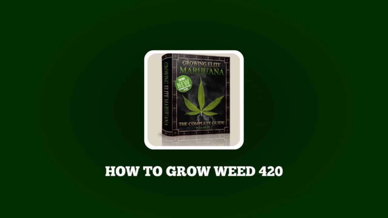 How To Grow Weed 420 - Coupon Codes - Learn To Grow Marijuana - Seeds & Lights