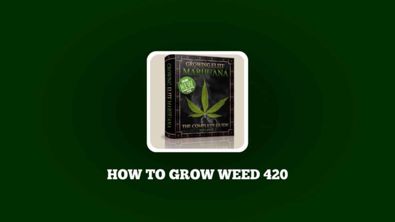 How To Grow Weed 420 - Coupon Codes - Learn To Grow Marijuana - Seeds & Lights