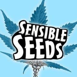 Sensible Seeds Coupon Codes Here! - Marijuana Seeds - Cannabis Seeds - Save On Cannabis - Marijuana Promos