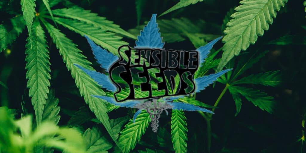 Sensible Seeds Coupons