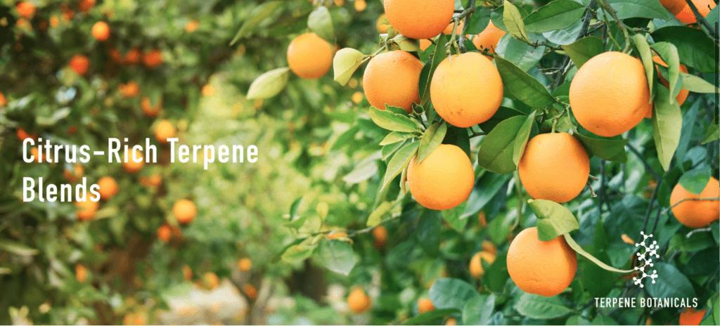 Terpene Botanicals coupon code citrus flavor.