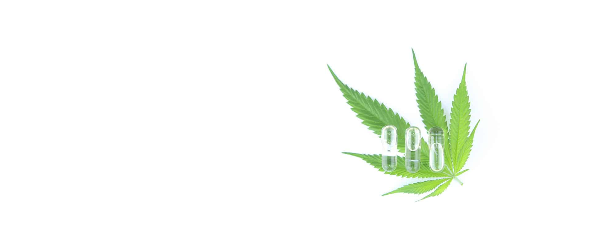 Cannabis leaf with Infinite CBD pills on it
