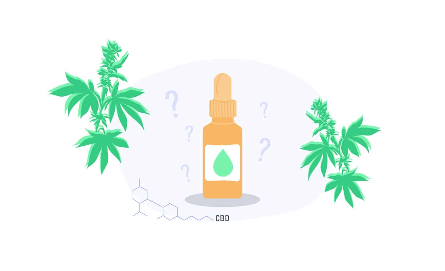 8 Most Asked CBD Questions