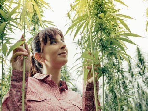 Meet Harmony - CBD E-Liquid - Cannabidiol Crystals - Online Hemp - Cannabis - Promo - Save On Cannabis