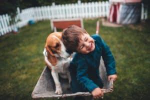 Treatibles CBD Pet Treat Coupon Codes - Hemp Online