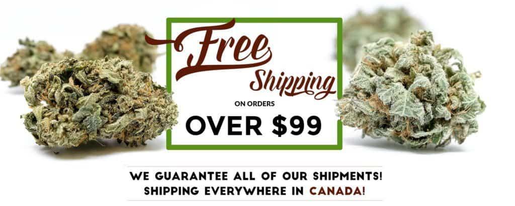Get marijuana online in Canada coupon code Blue + Yellow.