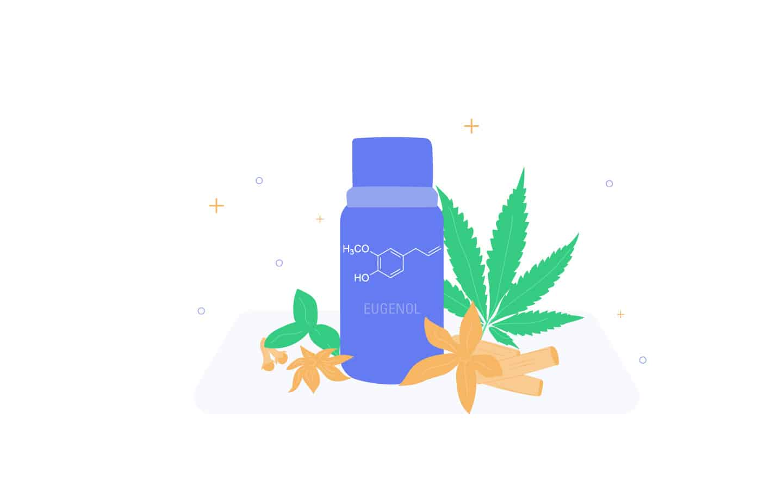 Cannabis Terpene Eugenol