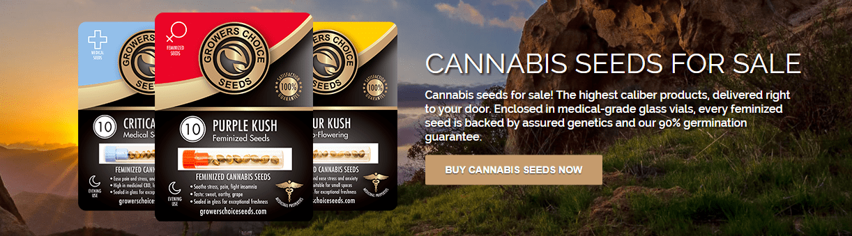 Growers Choice Seeds Store Discount Coupon Promo Certificate Offer1