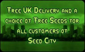 Seed City Coupon Discount Coupon Promo SC Shop Special Offer