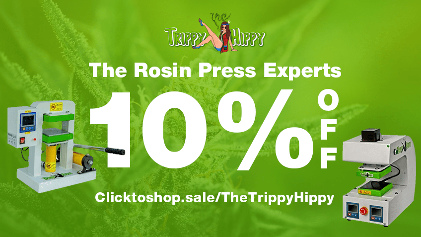 The Trippy Hippy Discount Coupon Promo Certificate Website
