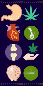 Colorful icons representing different cannabis strains paired with icons representing different health problems and physical ailments.
