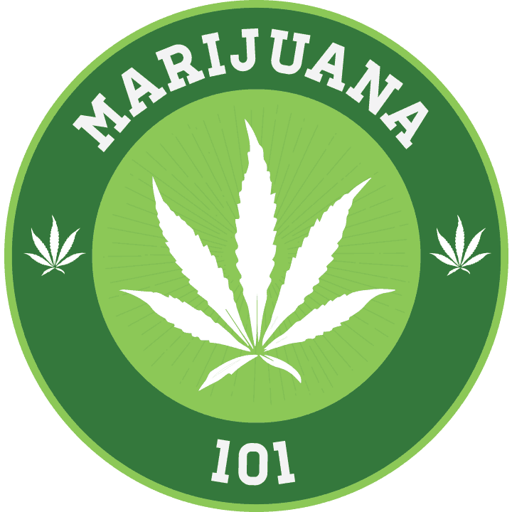 THC University Discount Promo Online Save On Offer7