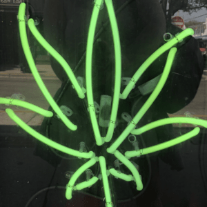 A neon green light glows in the window of a cannabis college.