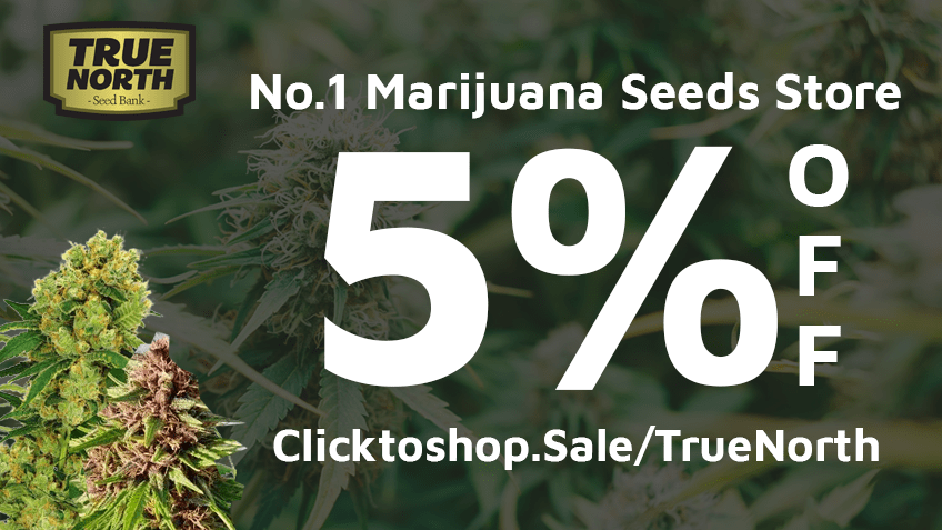 Seeds now coupon code