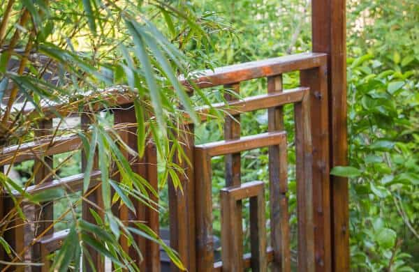 Get Mana Artisan Botanics Coupon Codes Here For Premium