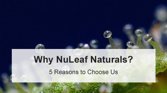 NuLeaf Naturals Coupon Code - Online Discount - Save On Cannabis