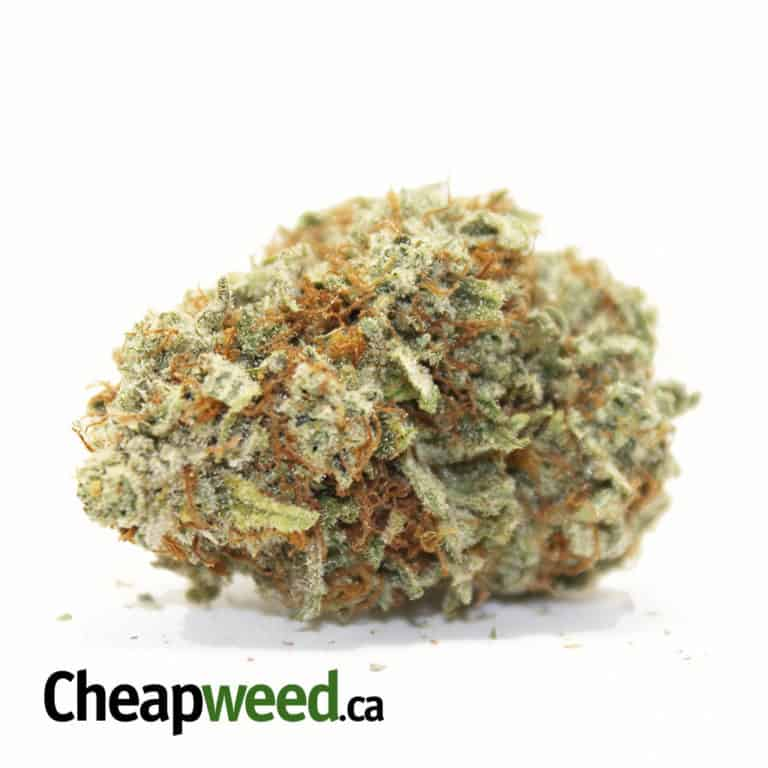 Cheap Weed Coupon Code Online Discount Save On Cannabis