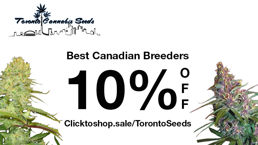 Toronto Cannabis Seeds Coupon Code Online Discount Save On Cannabis