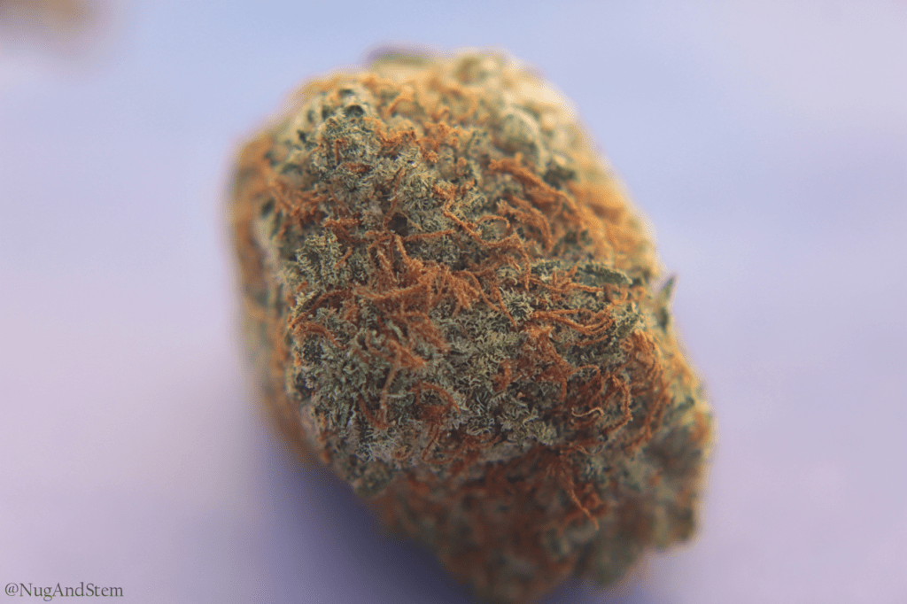 Green Society - Green Crack Review - Save On Cannabis Online