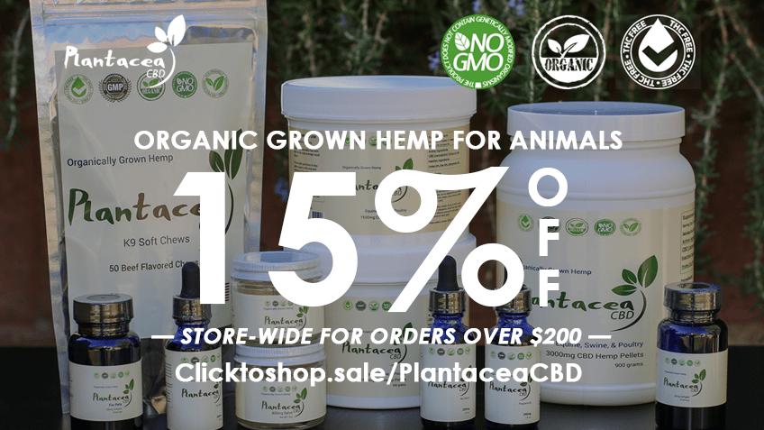 Plantacea-CBD-Coupon-Code-discounts-promos-save-on-cannabis-online-Website
