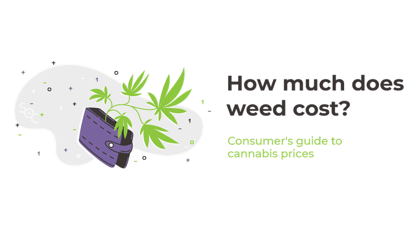 how much does weed cost? consumer's guide to cannabis prices