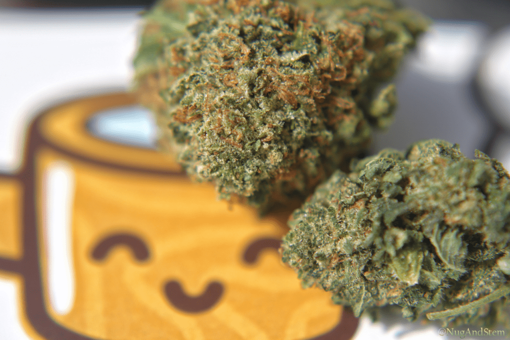 Get Kush Review - Master Bubba - Save On Cannabis