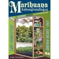 MoJamba-Smoking Coupon Code Online Discount Save On Cannabis