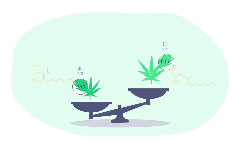 Guide to High CBD Strains