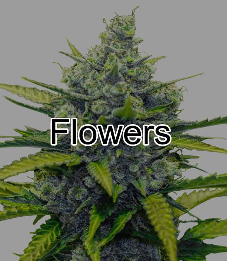 Cannada Express Coupon Code Online Discount Save On Cannabis