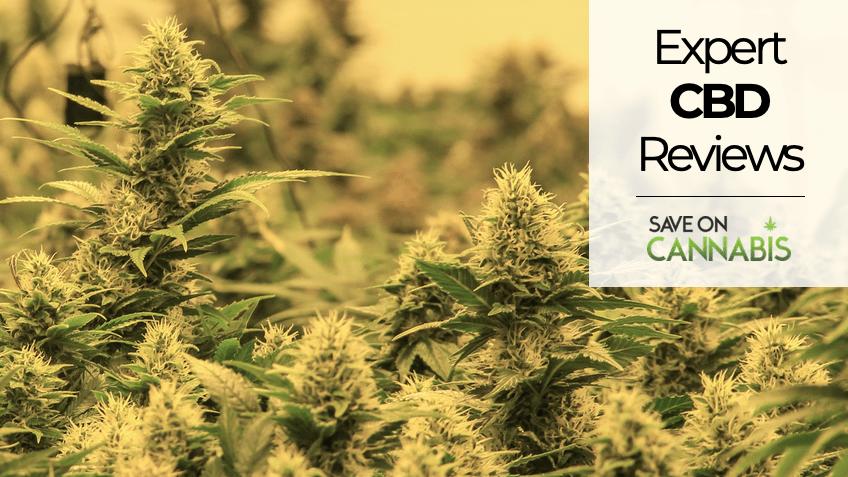 Expert CBD Reviews - Save On Cannabis