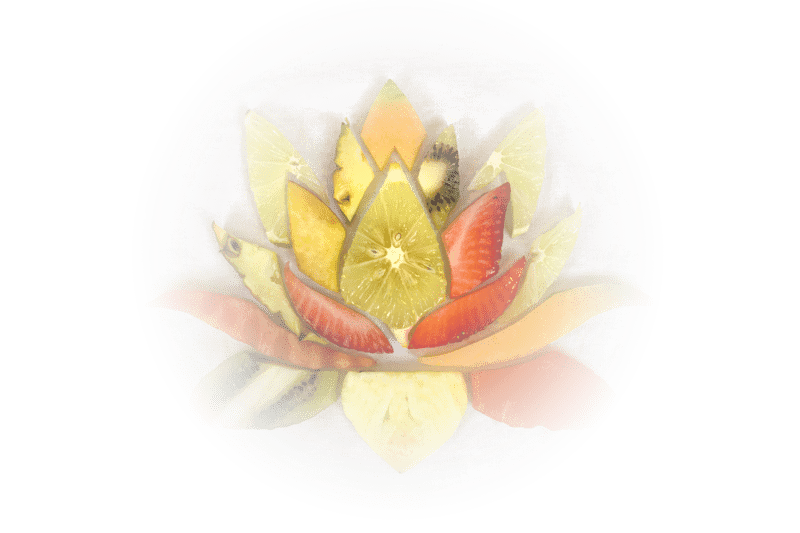 Living Lotus CBD Coupon Code Online Discount Save On Cannabis