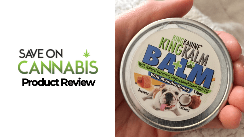 King Kalm Balm Review - CBD Pet Product - Save On Cannabis - FEATURED IMAGE