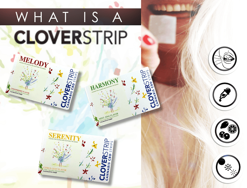 CloverstripCBD Coupon Code Online Discount Save On Cannabis Store4