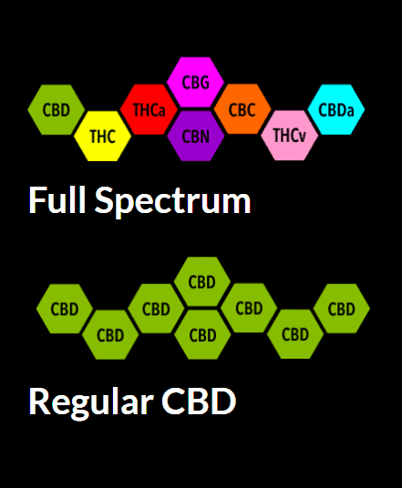 Try TheCBD.COM Coupon Code discounts promos save on cannabis online Store12