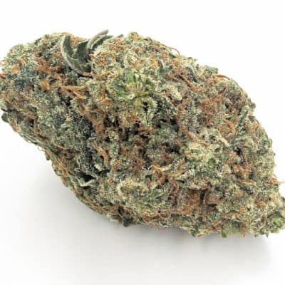 Hoptheline Coupon Code discounts promos save on cannabis online Store8