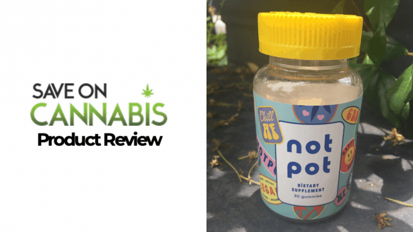 CBD Review: NotPot Vegan CBD Gummies