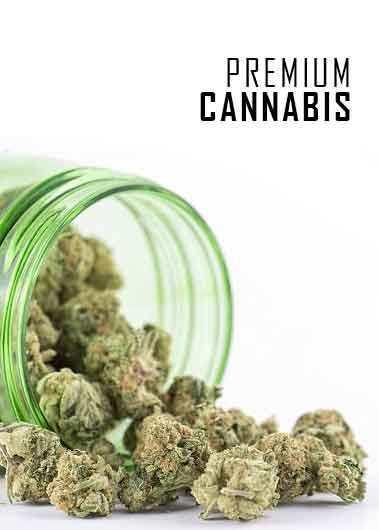 Cannabis kush lying on table