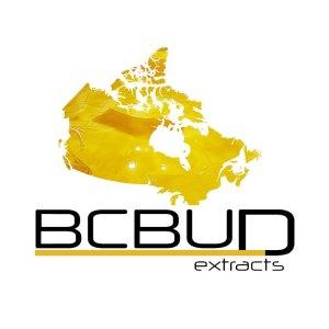 BCBud extract logo