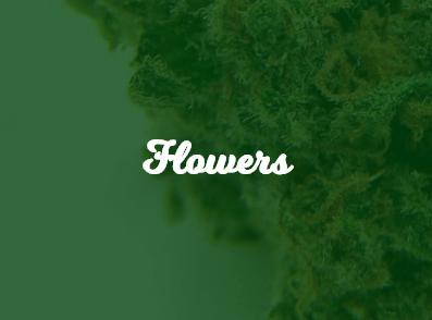 Cheebas Flowers