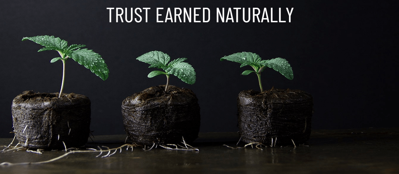 Trust Earned Naturally