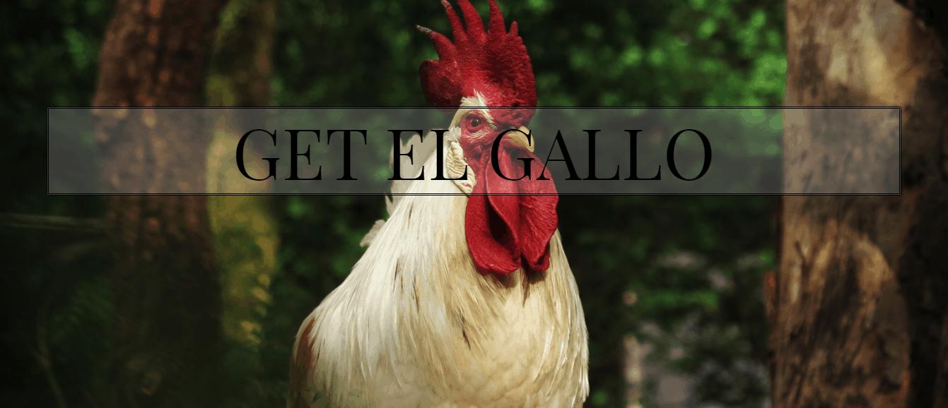 El Gallo CBD Coupon Code Get It