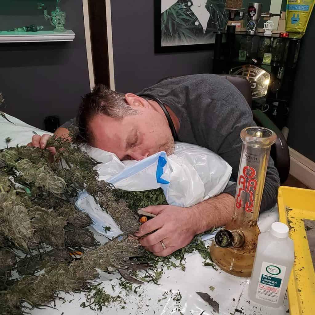 Dude Grows Show marijuana podcast