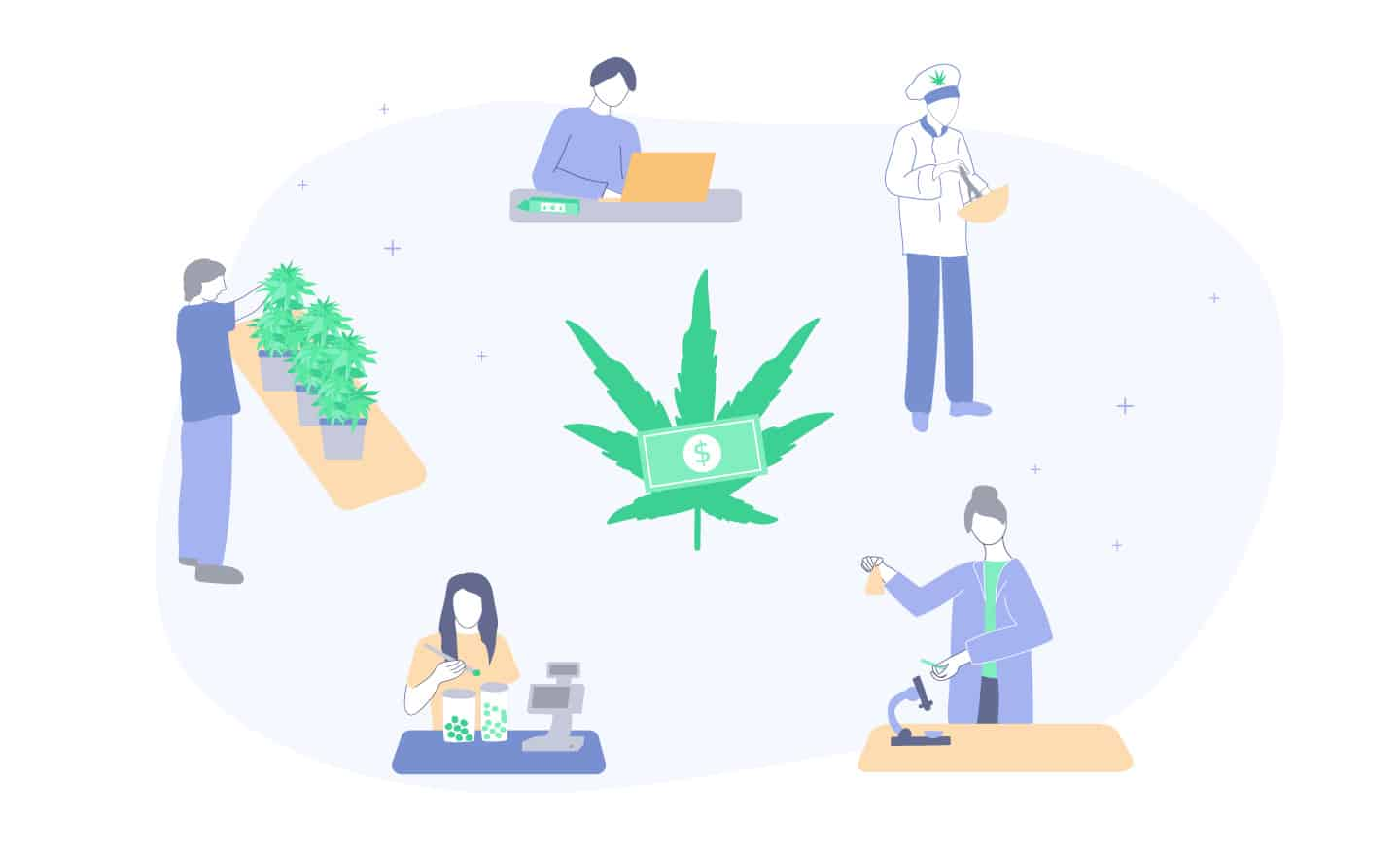 best cannabis jobs and salaries guide