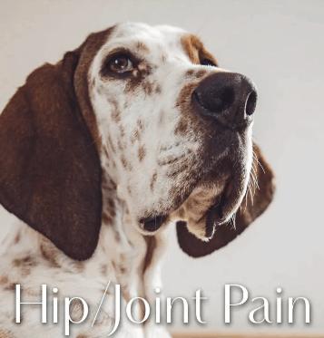 Greenwell Pet Box CBD Coupon Code Joint Pains