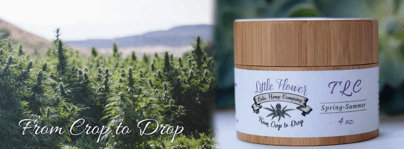 Little Flower Hemp Company Coupon Code Premium