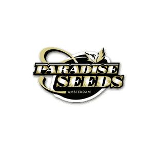 Paradise Seeds CBD Coupon Code Logo