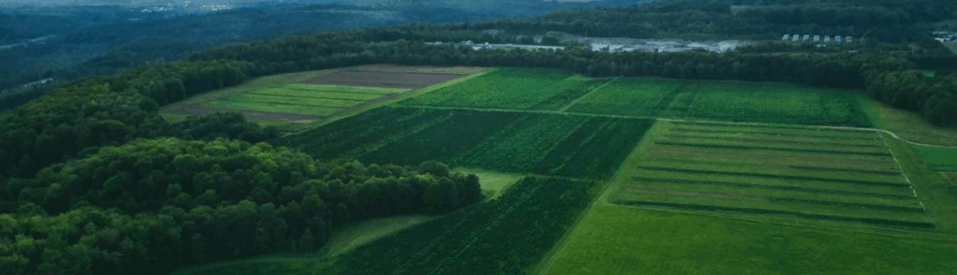 Sunsoil CBD Coupon Code Our Farms