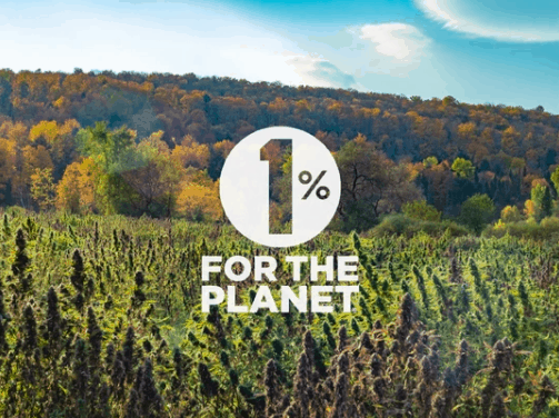 Sunsoil CBD Coupon Code For the planet